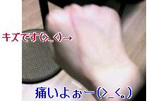 f0136776_2281561.jpg