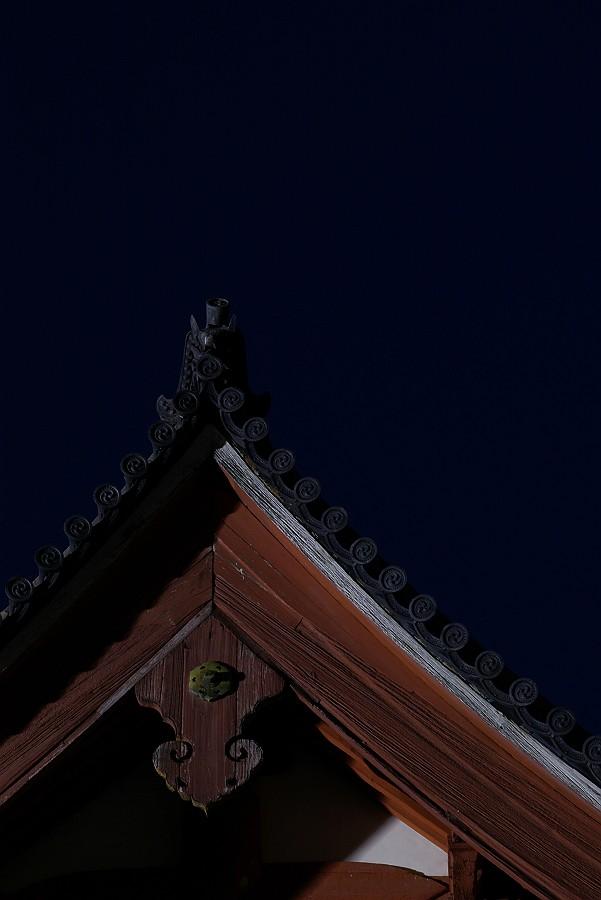 西国寺クローズアップ_c0152379_9355958.jpg