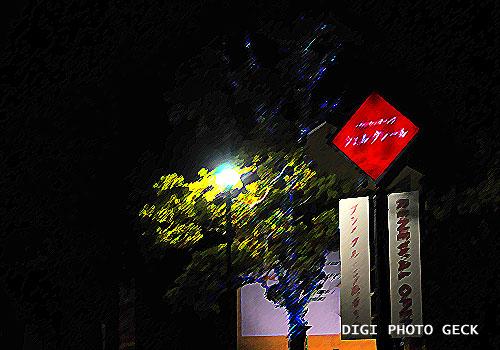 ファンタスティックなイルミネーション ~★_d0147591_9183649.jpg