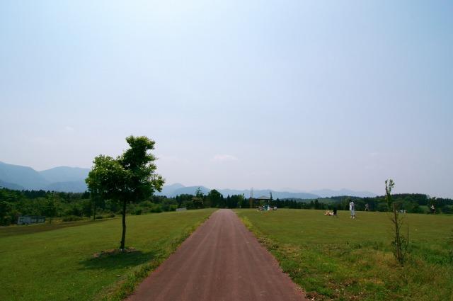 新緑の木の実の里_f0138600_427329.jpg
