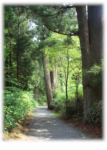 高野山旅行記 Part1_d0075206_1045224.jpg