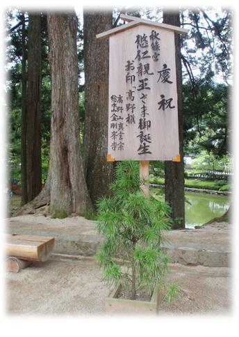 高野山旅行記 Part2_d0075206_16352742.jpg