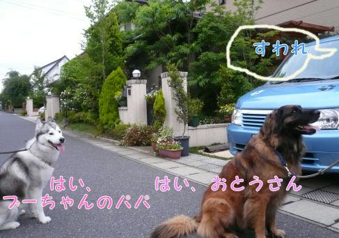 f0112407_17375084.jpg