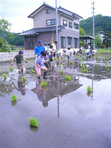 田植え交流会2008(農作業編)_f0071456_23452645.jpg
