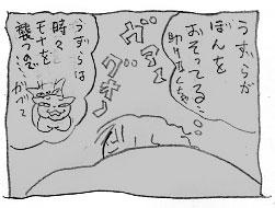 黒い大猫_a0064067_2112864.jpg
