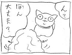 黒い大猫_a0064067_2121955.jpg