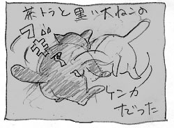 黒い大猫_a0064067_2133764.jpg