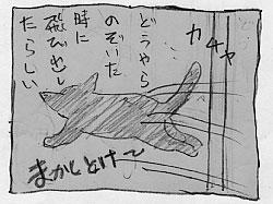 黒い大猫_a0064067_2145217.jpg