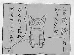 黒い大猫_a0064067_2151766.jpg