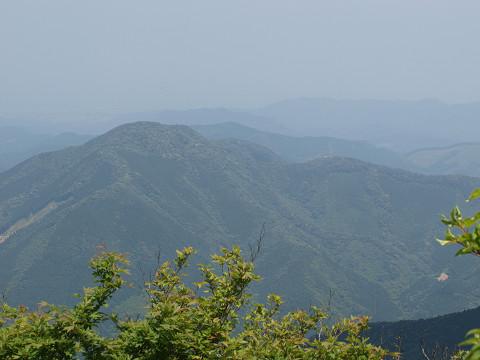 山頂の集団お見合い広場_b0135573_1839483.jpg