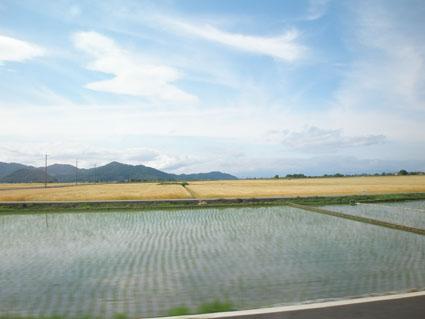徳島ミニ旅行 3_e0127286_220328.jpg