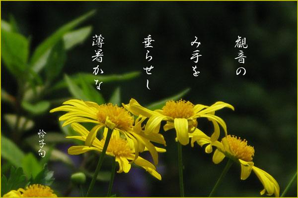 c0065587_0472136.jpg