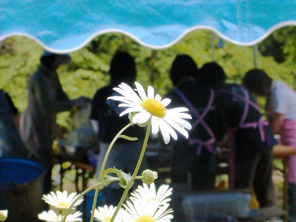 鼓土里座 初夏の陣 「Field Foods Concert」 その2_c0057390_23144331.jpg