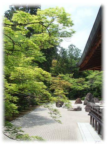 高野山旅行記 Part3_d0075206_14542332.jpg
