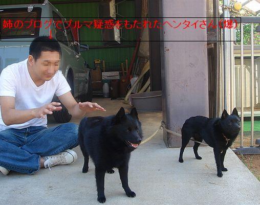a0028309_201017.jpg