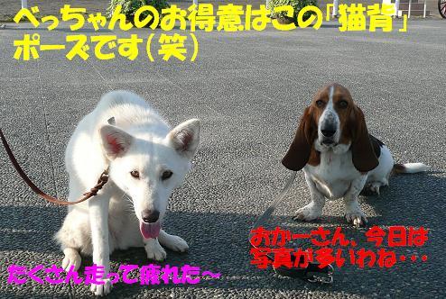 f0121712_13502480.jpg