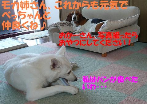 f0121712_13504942.jpg