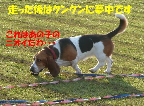 f0121712_13552699.jpg