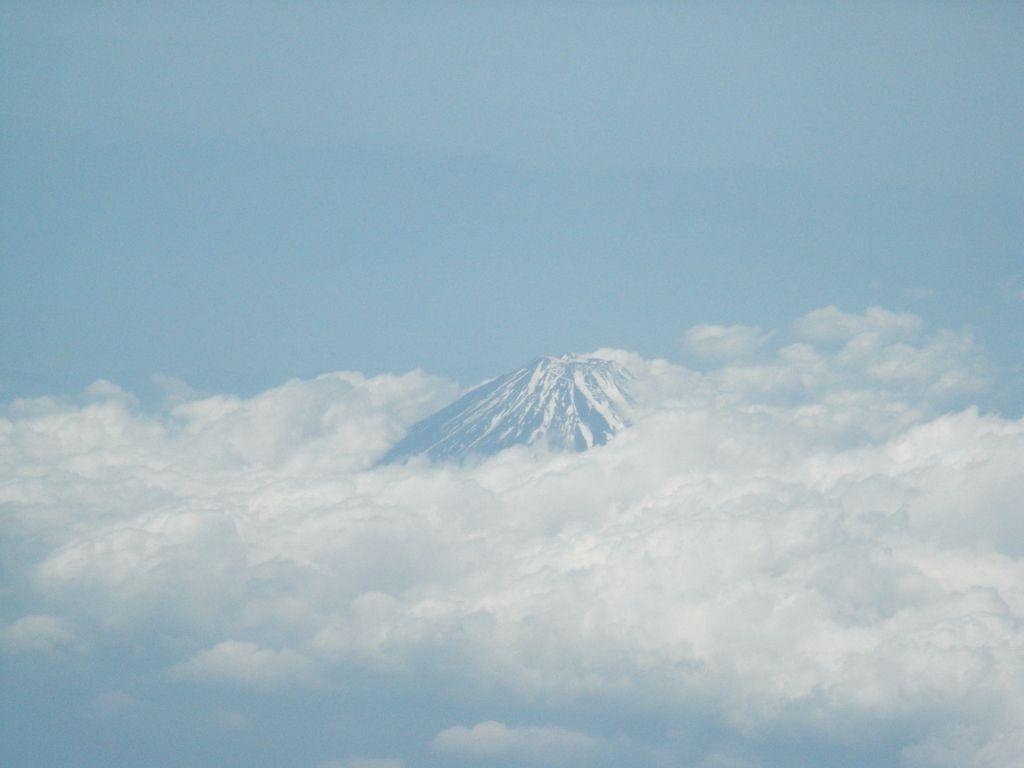 徳島_c0025115_2337561.jpg