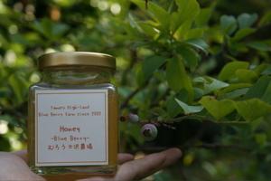 蜂蜜とれました_c0123523_1816187.jpg