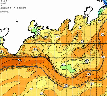 黒潮は伊豆沖から東に・・・いっちゃった!       [カジキ・マグロトローリング]_f0009039_182672.jpg