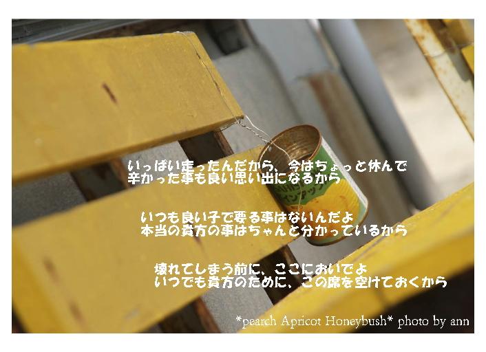 b0126044_752457.jpg
