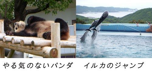 b0129451_11561748.jpg