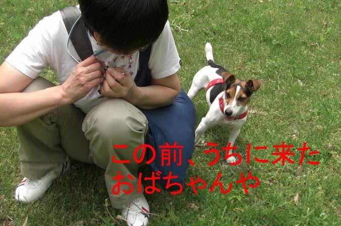 f0053952_20113966.jpg