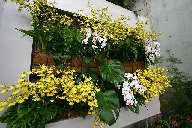 花の美術館へ~その5_d0152261_20381184.jpg