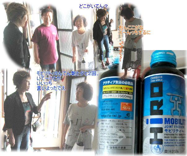 f0082367_16441537.jpg