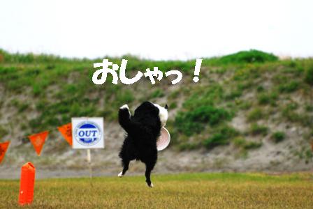 f0029717_135848.jpg