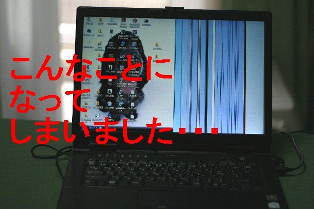 a0100721_10163870.jpg
