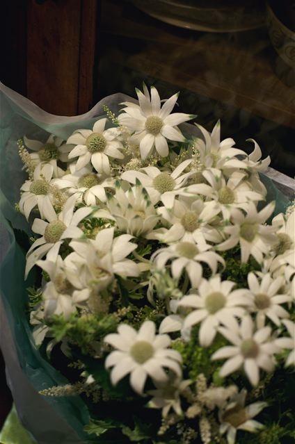 花を贈る。_e0044929_20636100.jpg