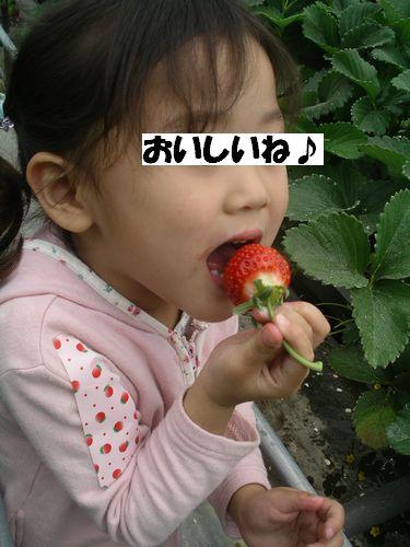 c0133470_12541137.jpg