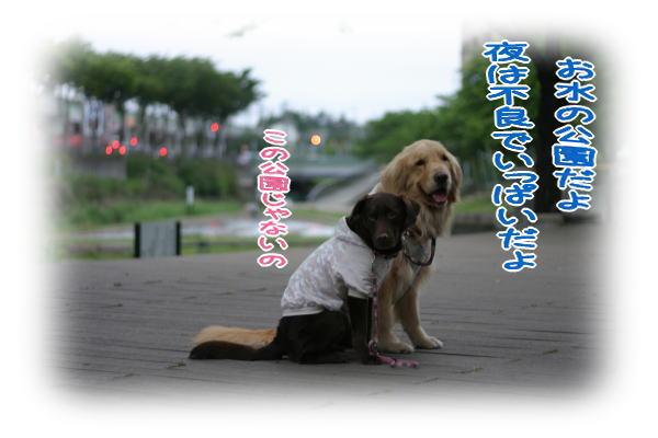 f0109418_0303141.jpg