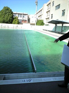 小学校のプール見学 by.okada_b0117125_18421155.jpg