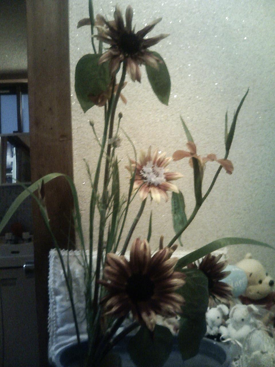先週のお稽古花「アイリス」がぐんぐん成長しました♪_b0137453_1920437.jpg