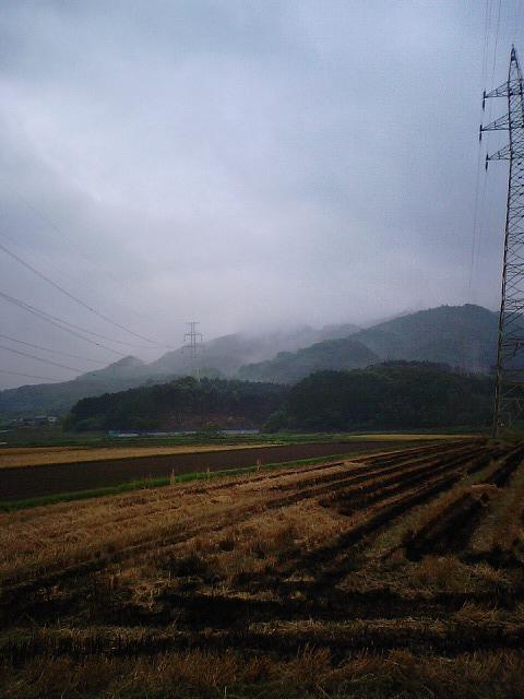 雨の山肌_b0114756_8434942.jpg