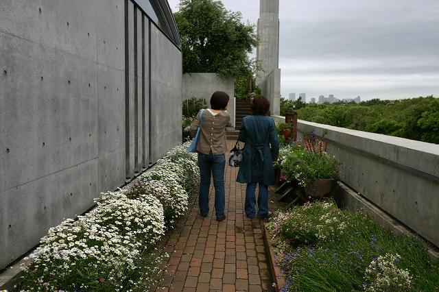 花の美術館へ~その6_d0152261_7525391.jpg