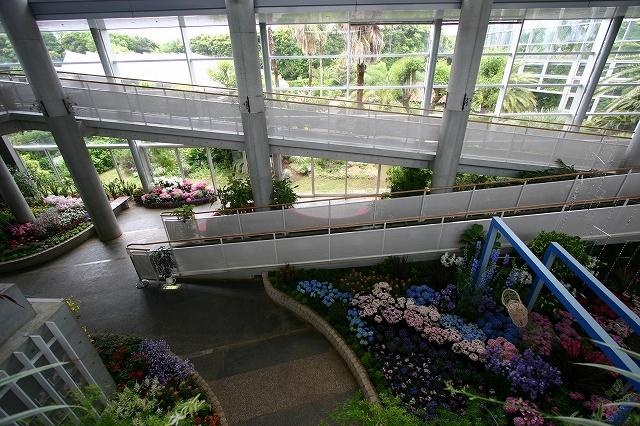 花の美術館へ~その6_d0152261_757356.jpg