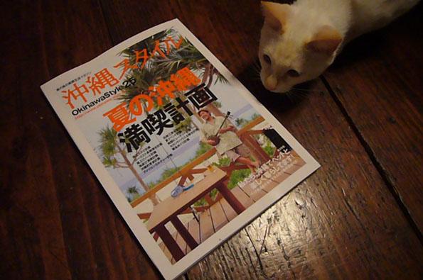 okinawa style._c0153966_20352557.jpg