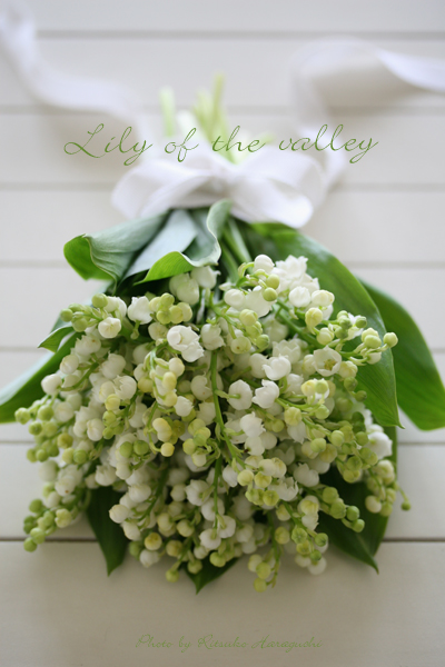 Lily of the valley_f0127281_17551868.jpg