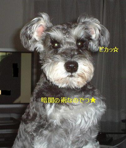 d0079701_23363310.jpg