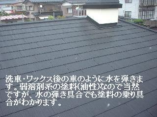 f0031037_16344350.jpg