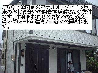 f0031037_1651644.jpg