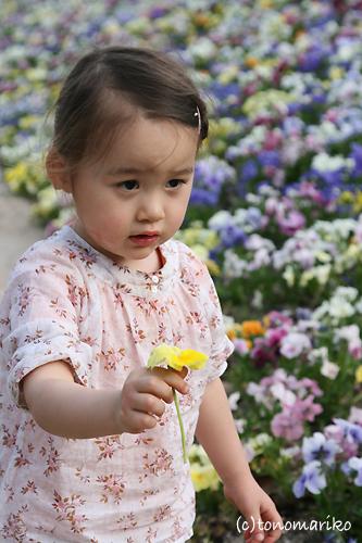 弟をお花で飾ろう?!_c0024345_7444140.jpg