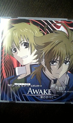 AWAKE~僕のすべて~_e0004846_1358461.jpg