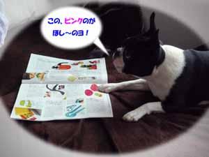 f0166359_14135931.jpg
