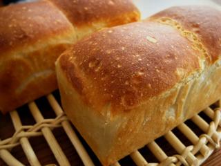 生クリームミニ食パン(青サフ)_c0110869_1139457.jpg