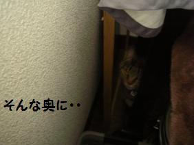 c0139488_16141879.jpg